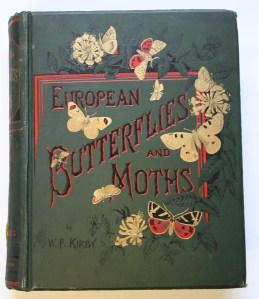 butterflies12