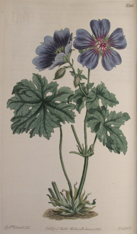 Curtis's Botanical Magazine Vols. 33-34 1811