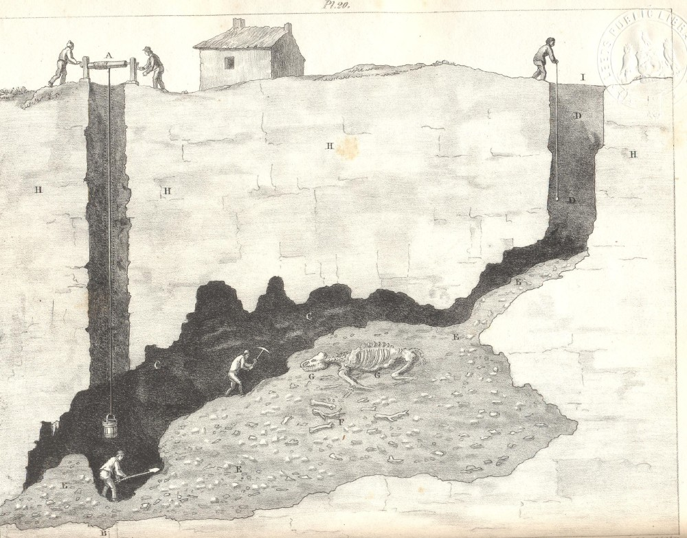 "Illustration from Buckland's Reliquiæ showing a ""Section of the cave in the Dream lead mine near Wirksworth, Derbyshire, 1822"