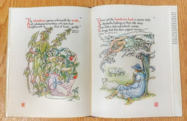 Illustrations from Walter Crane's 'Flowers From Shakespeare's Garden'