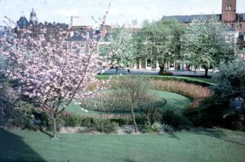 1978. This springtime view of Woodhouse Square was taken from a window of number 2 Claremont Avenue (c) Leeds Libraries